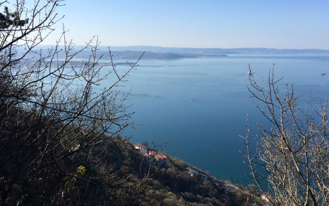 Corri in natura senza limiti: i sentieri di Trieste Atletica
